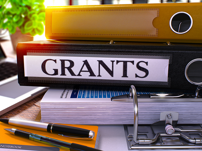 5 Grant facts to know before you start writing